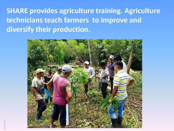 Agriculture Training - Slide 1
