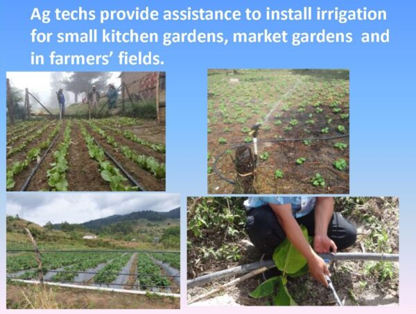 Agriculture Training - Slide 10