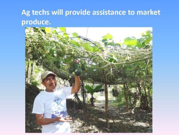 Agriculture Training - Slide 11