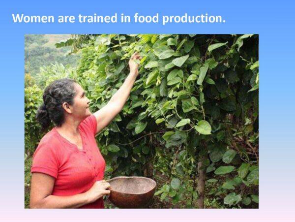Agriculture Training - Slide 9