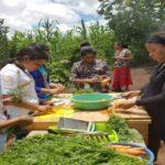 Skills training, Honduras