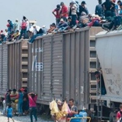 News - migration1 (2)