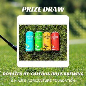 Virtual Golf Tournament. Donate to win prizes.