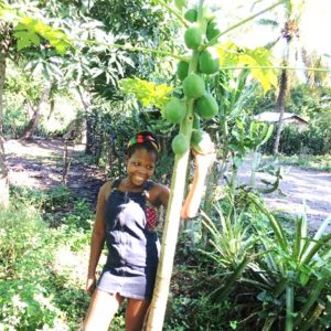 garden, testimonital